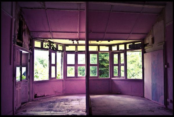 pink room in abandoned house along Tyersall Ave