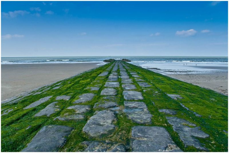 Breakwater at the shore in  Ostend