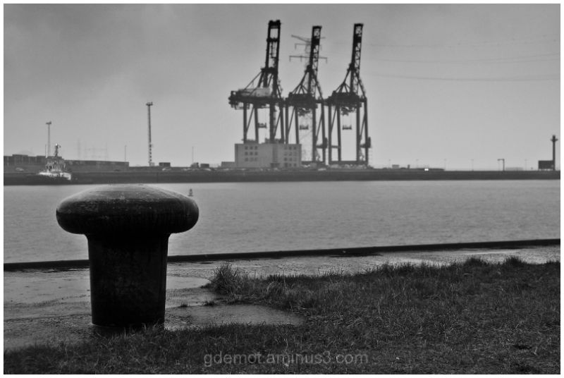 Port of Antwerp Cranes