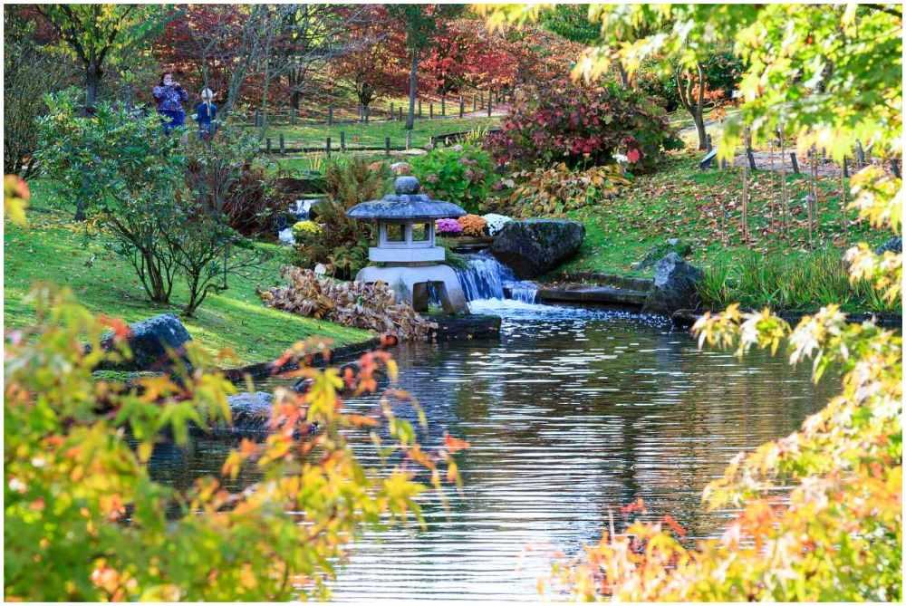 Japanese Garden in Hasselt