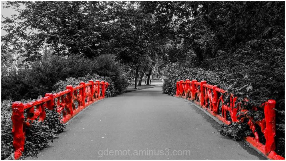 red bridge in a monochrome landscape