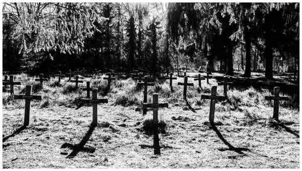 Insane Cemetery