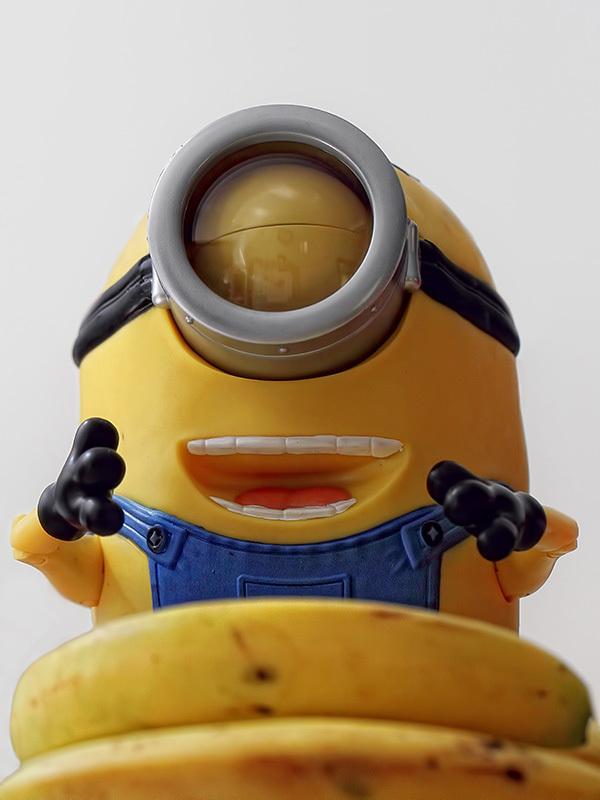 Minion Dave, Despicable Me 2
