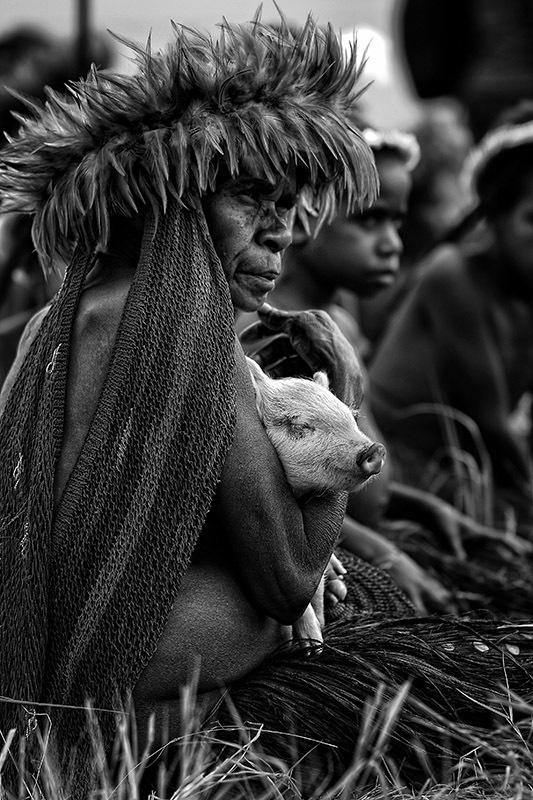 The Baliem Valley Festival, Wamena, Jayapura, Indo