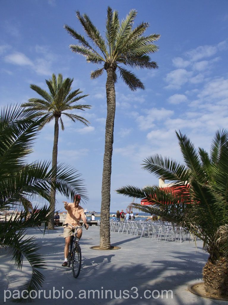 Las bicicletas son para el verano 2