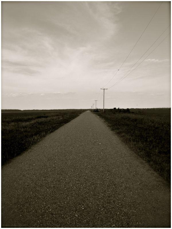 Long Road - Jerome, Arkansas