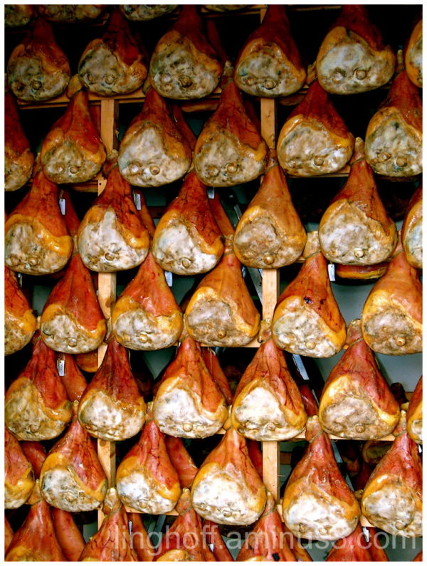 italy - tuscany prosciutto di parma italy ham