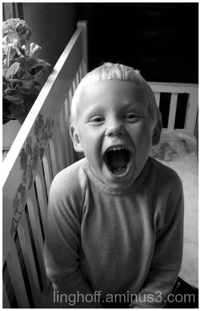 happy laughter skrattar roligt