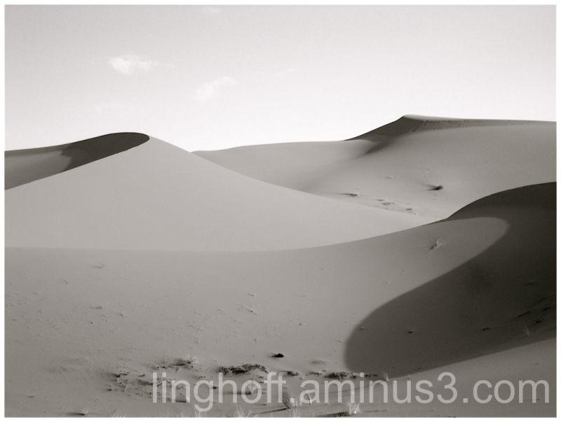 sahara öken sanddynor skugga värme