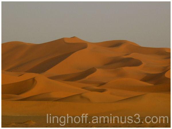 sahara öken sanddyna skugga värme sand dunes