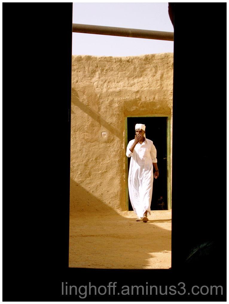 ud fiddler morocco marocko spelare spelman öken