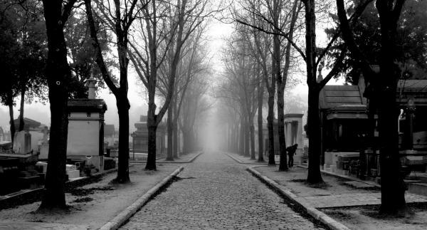 Paris in mist-18