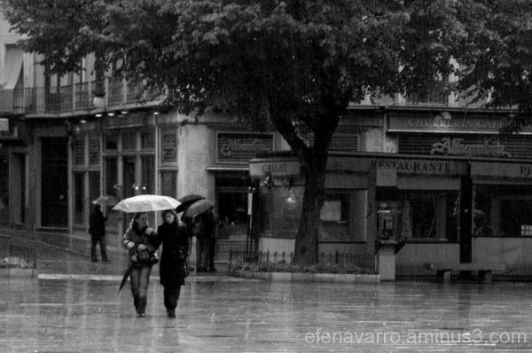 Bendita lluvia