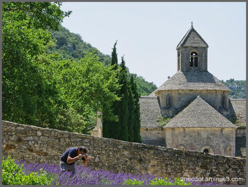 L'oeil du photographe ...  (Sénanque, France)