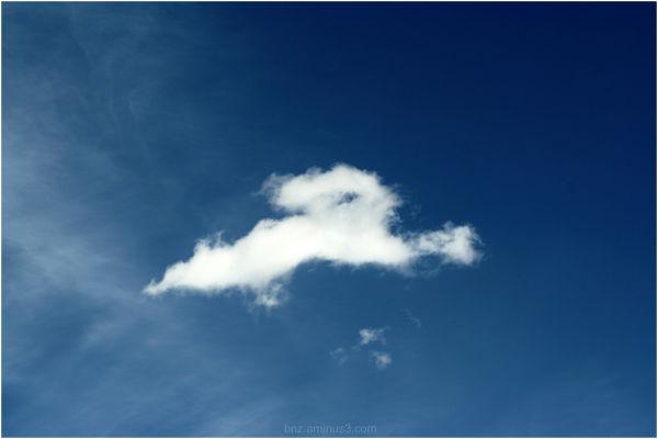 Rabbit (Sky 19)
