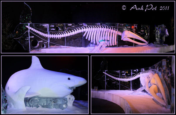 collage of icesulptures pf a whale and a shark