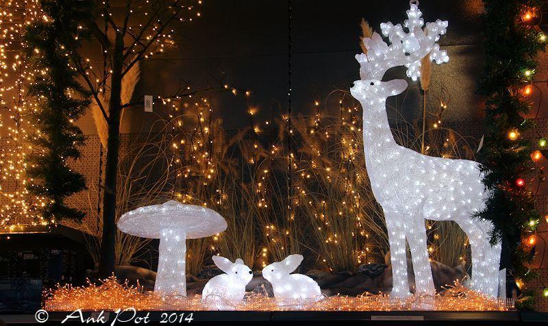 Christmaslights
