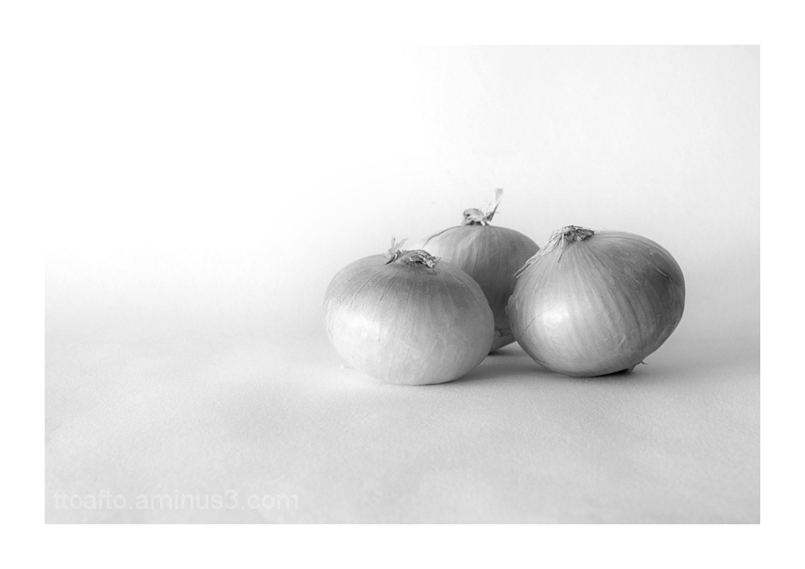 Cebollas / Onions