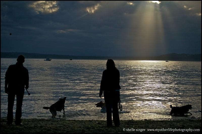 Last Dog Days of Summer