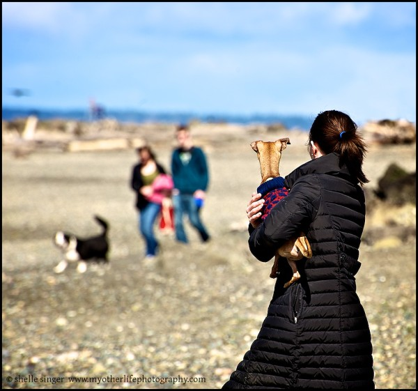 woman holding dog at beach