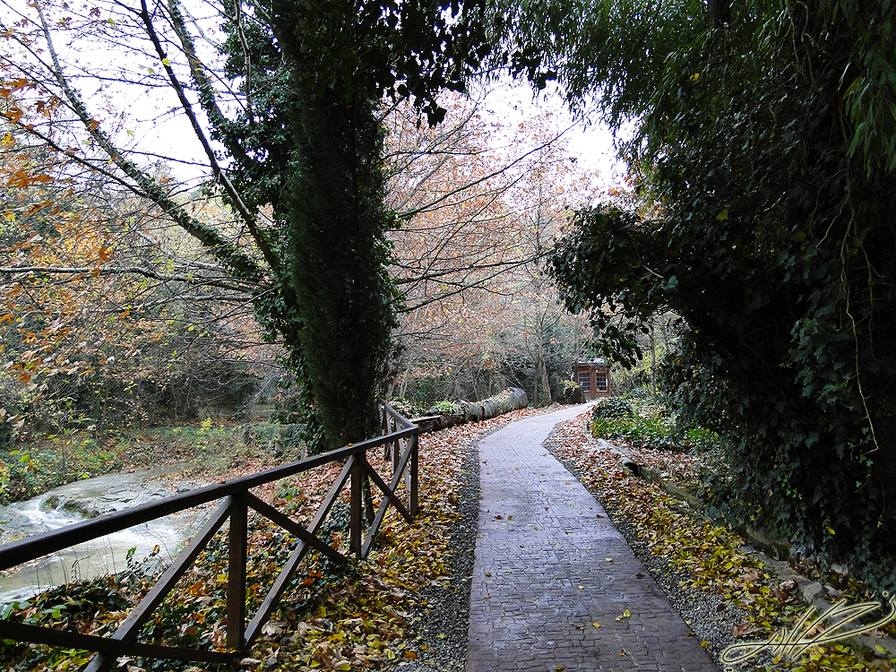 walk park4