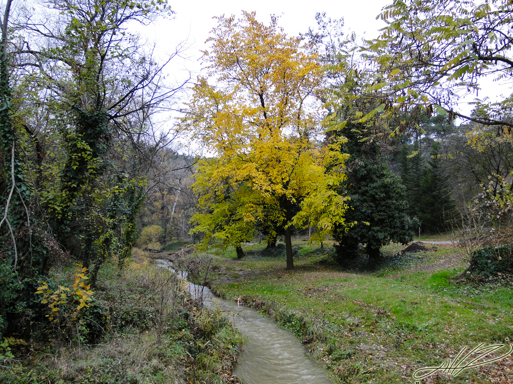 walk park5