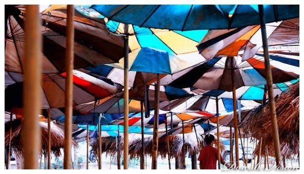 A l'Ombre des Parasols