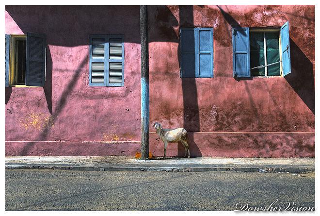Saint Louis (SENEGAL)