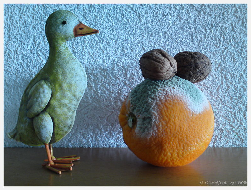 Orange et noix