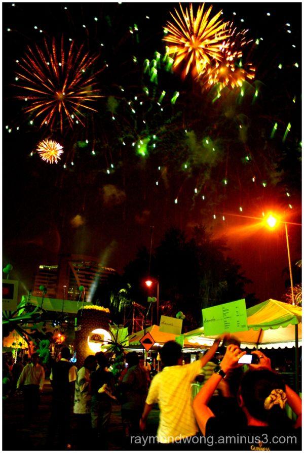 Saint Patrick's Day 2010