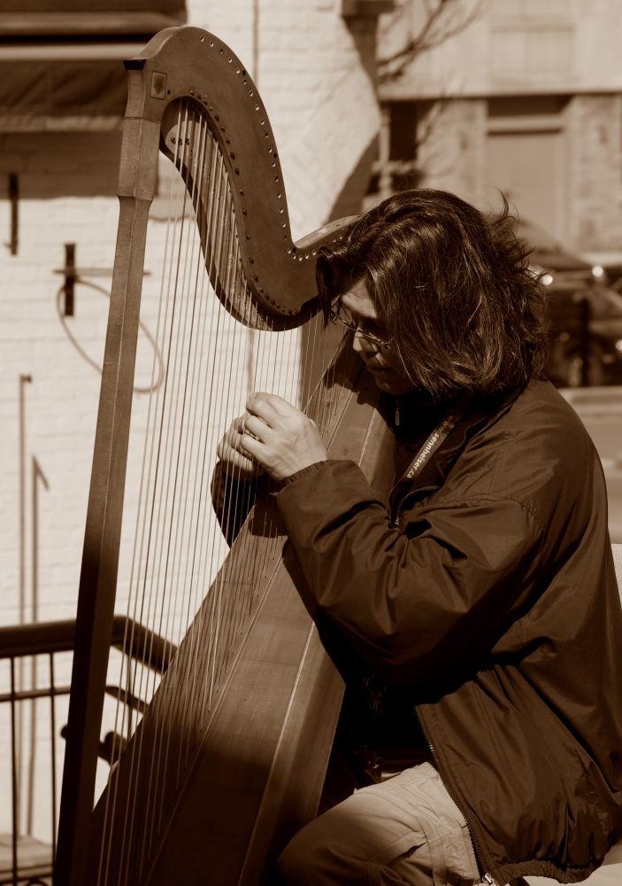 Man playing a harp