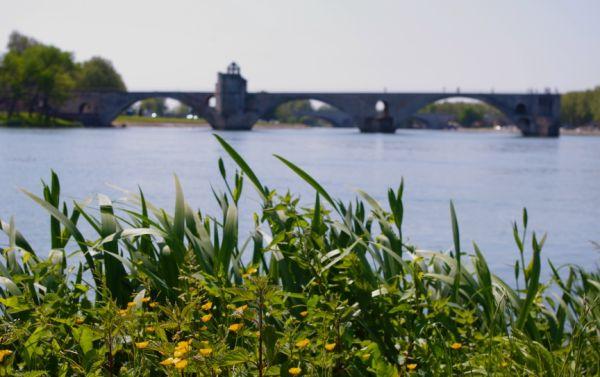 Looking out towards the famous Pont D'Avignon