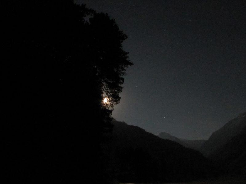 starry nights  7