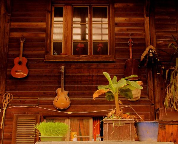 Grass and guitars