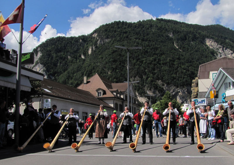 alphorn or alpenhorn or alpine horn