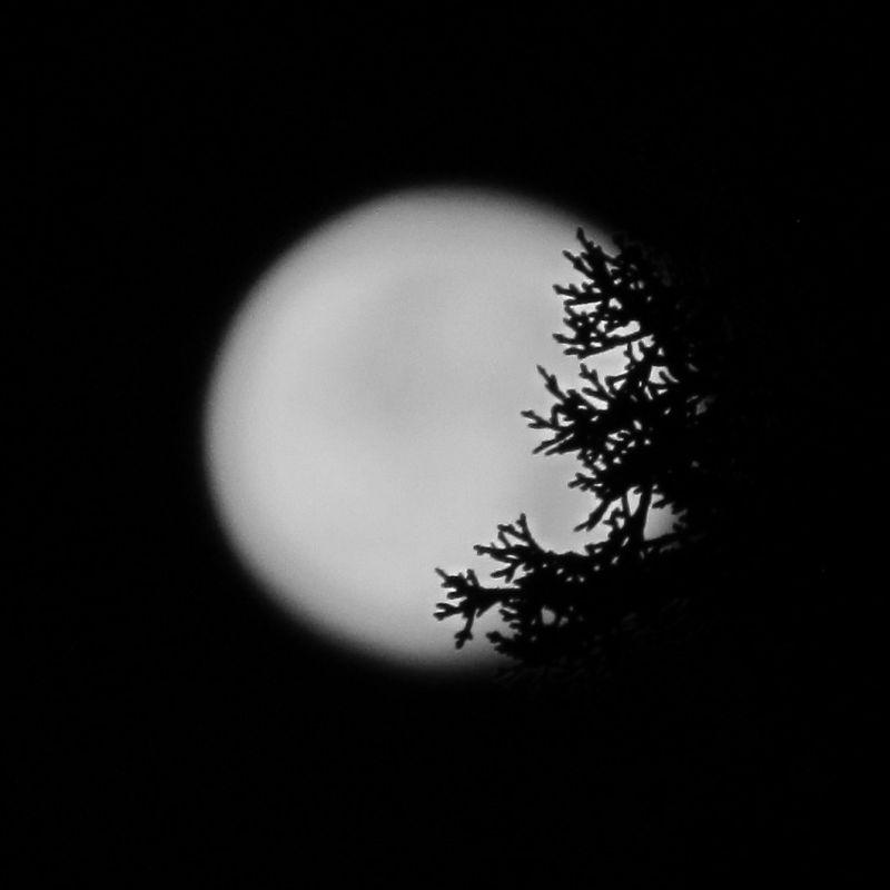 Shadows on Moon