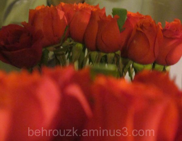 گل و آینه