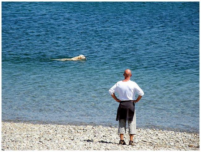 Maitre nageur