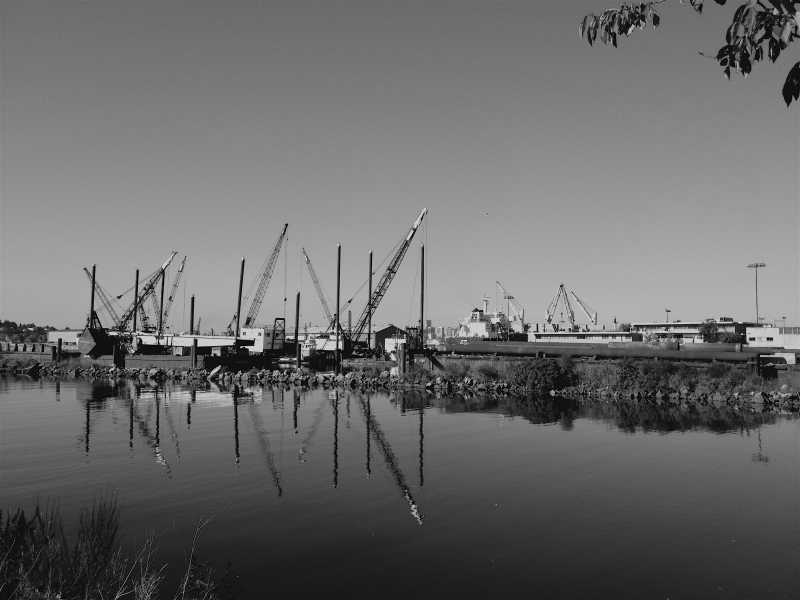 Harbor side in black and white