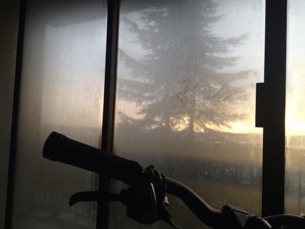 bike's eye view