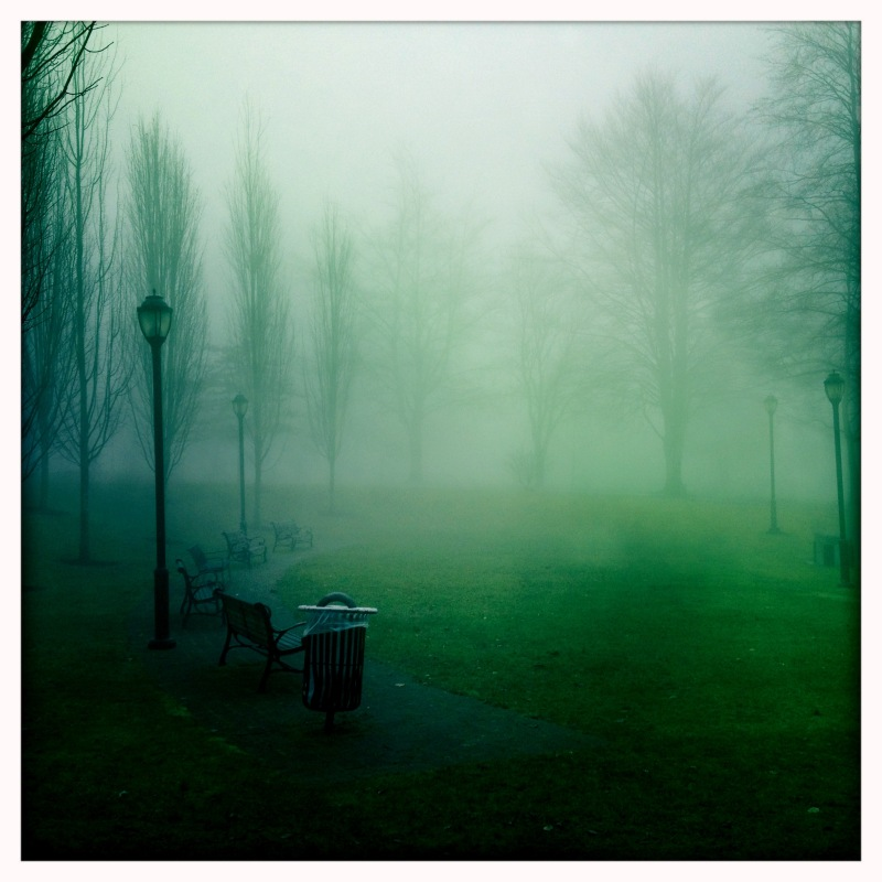 Victoria Park in the fog