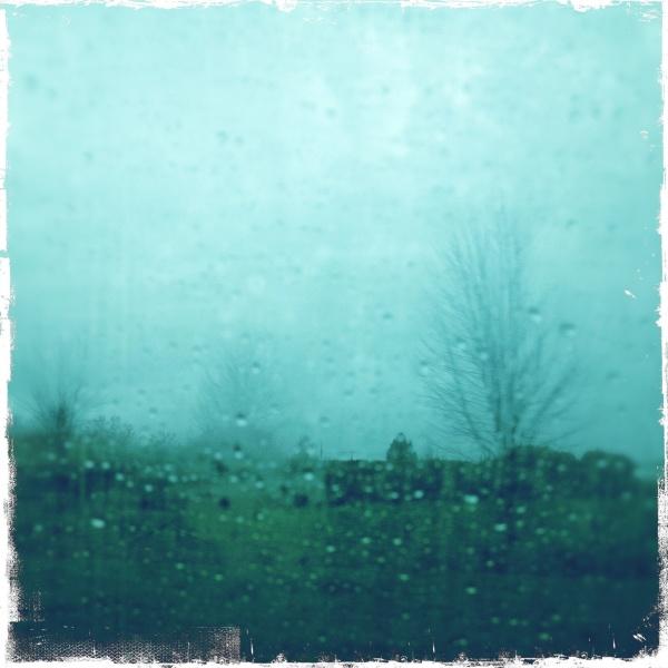Ladner through a rainy window