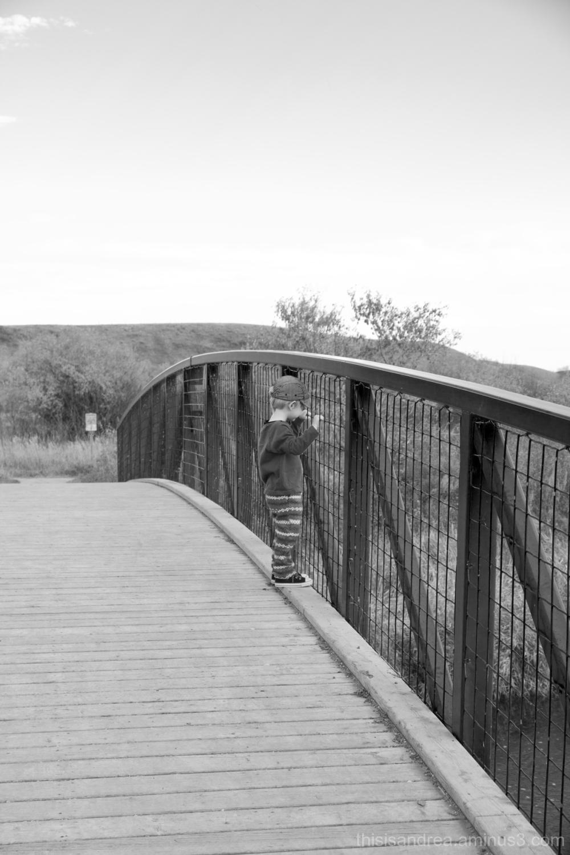 boy peeking over a bridge