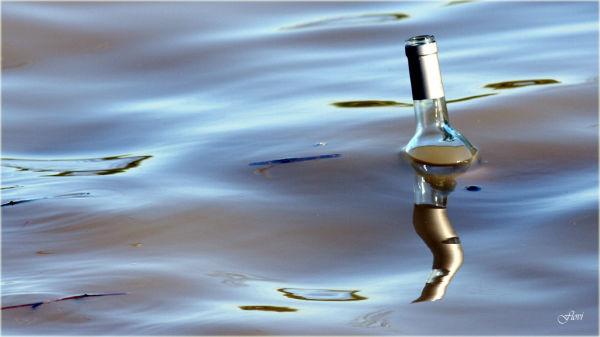 Une bouteille à la mer... 2