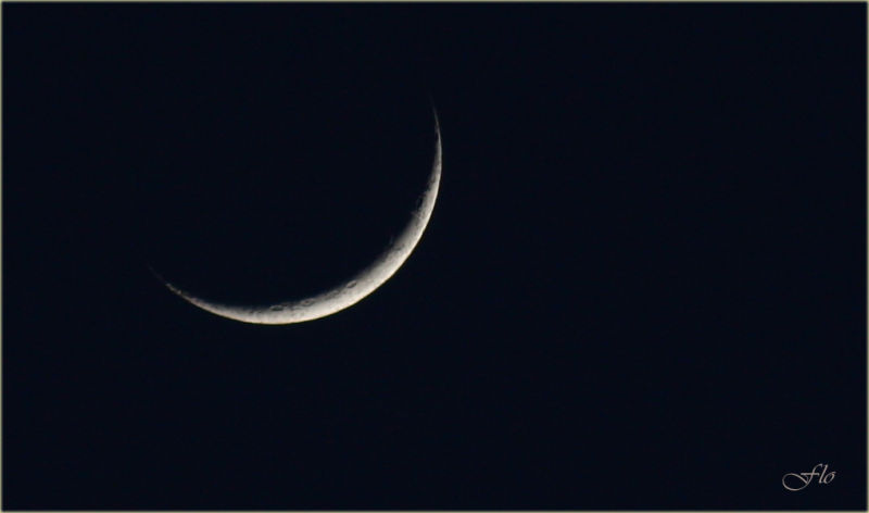 Objectif Lune...