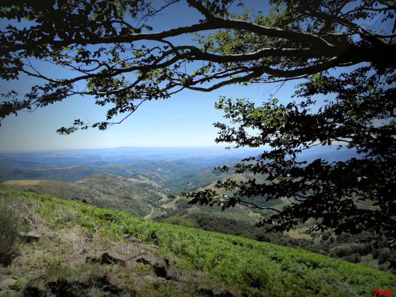 Montagnes d'Ardèche