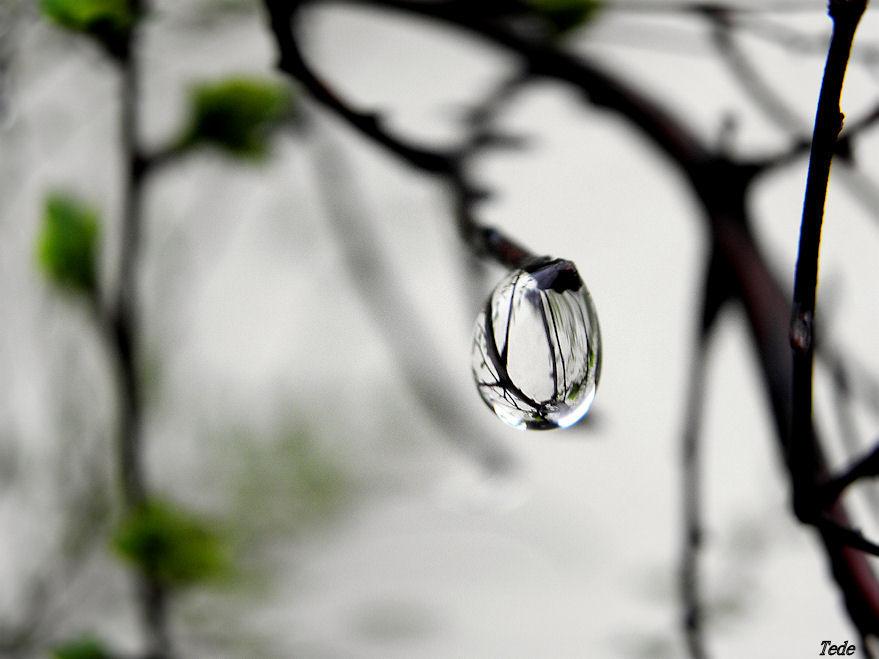 Une goutte de pluie