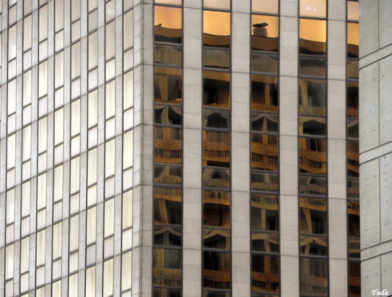 Reflets à Lyon