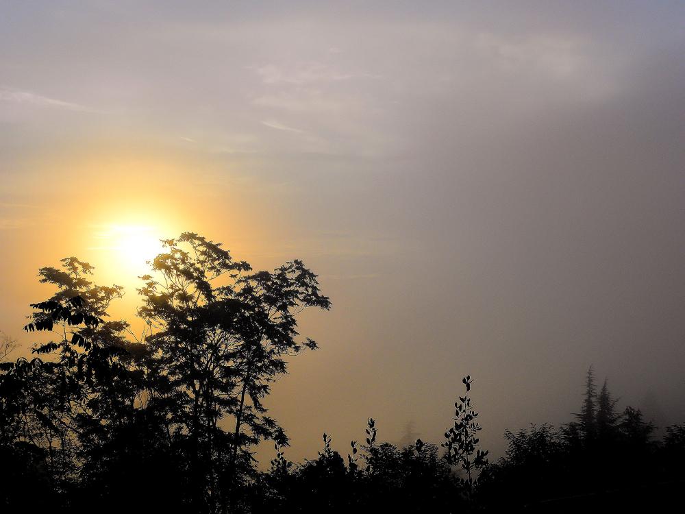 Le soleil dans la brume
