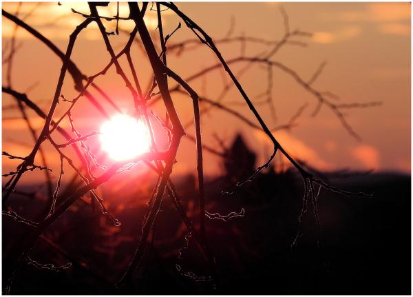 Le réveil du soleil